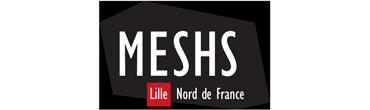 MESHS - Maison Européenne des Sciences de l'Homme et de la Société Lille Nord de France